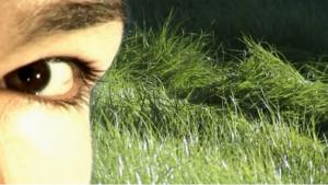 Eye/I